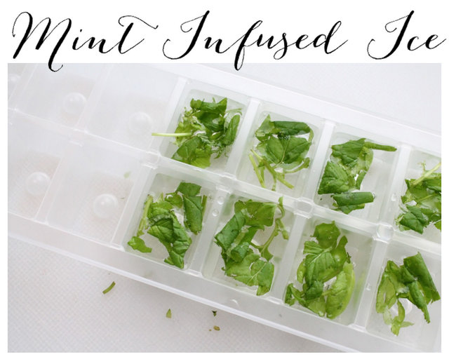 how to make mint ice cubes